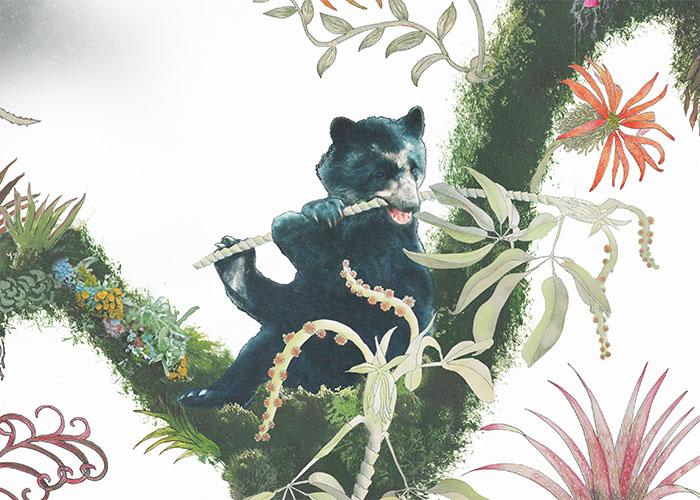 Andean bear detail