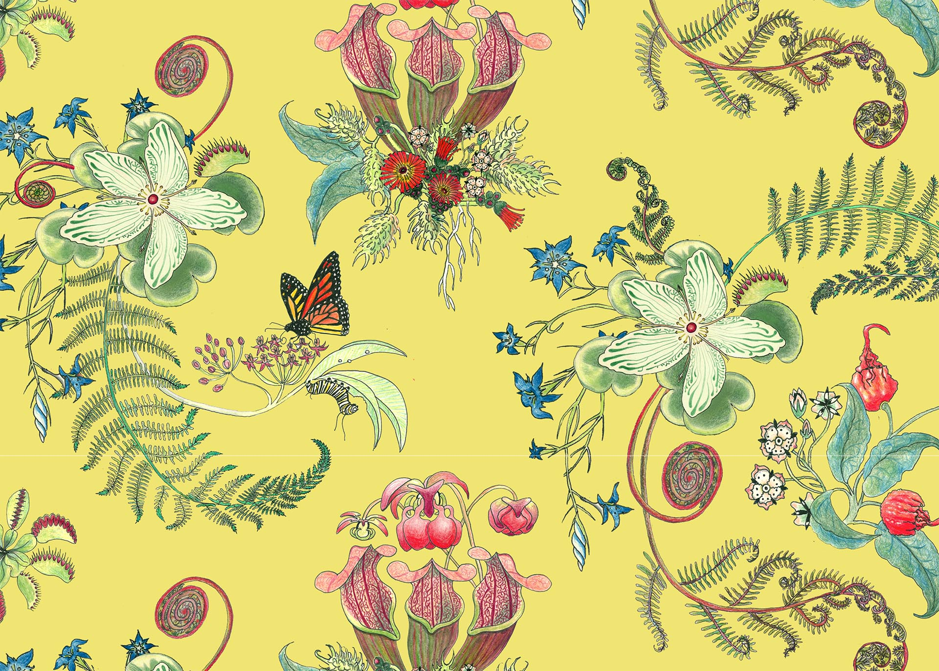 ButterPosies, in the Carolina Tree of Life Collection by Newton Paisley.