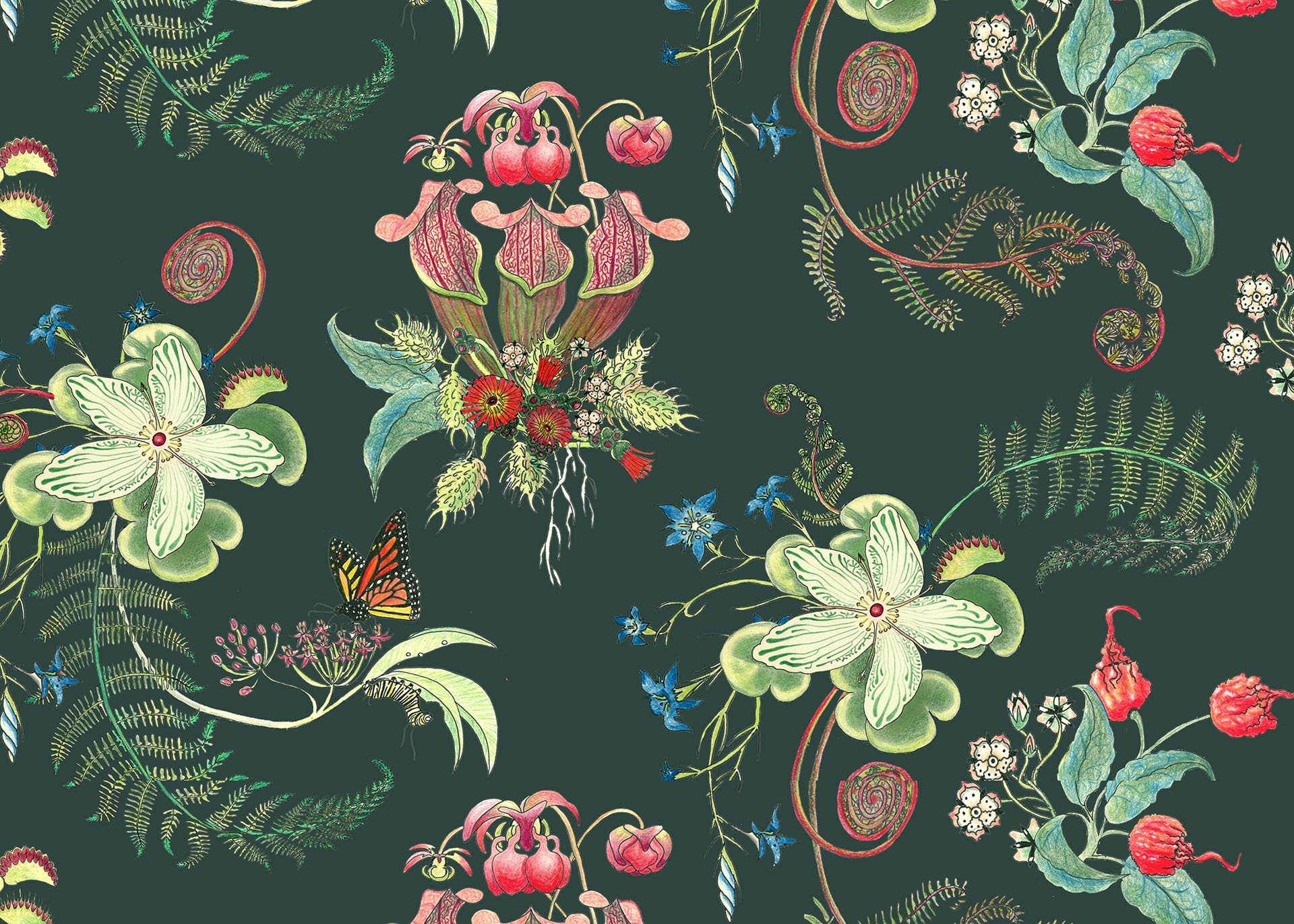 Forest Posies, in the Carolina Tree of Life Collection by Newton Paisley.