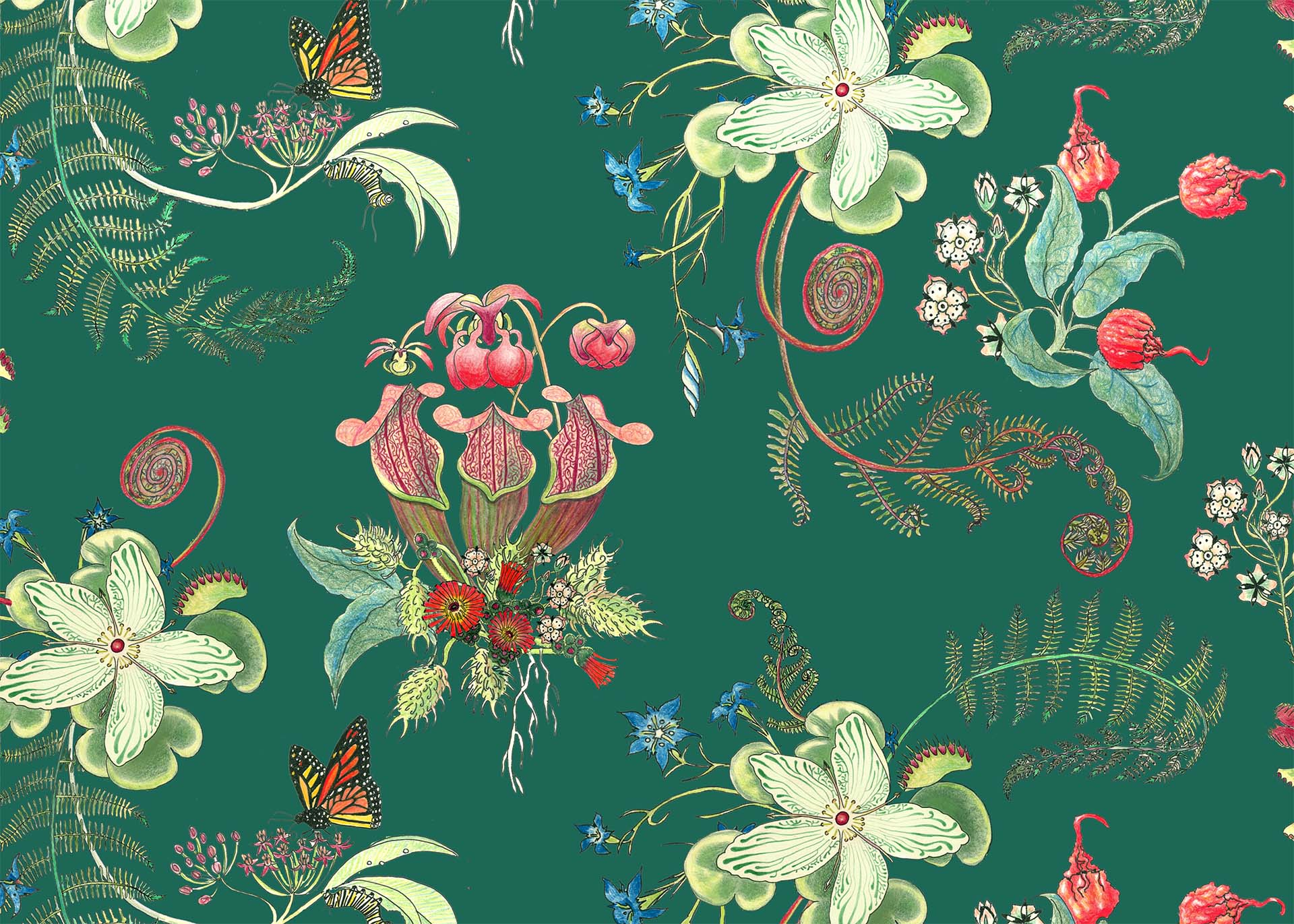 JadePosies, in the Carolina Tree of Life Collection by Newton Paisley.