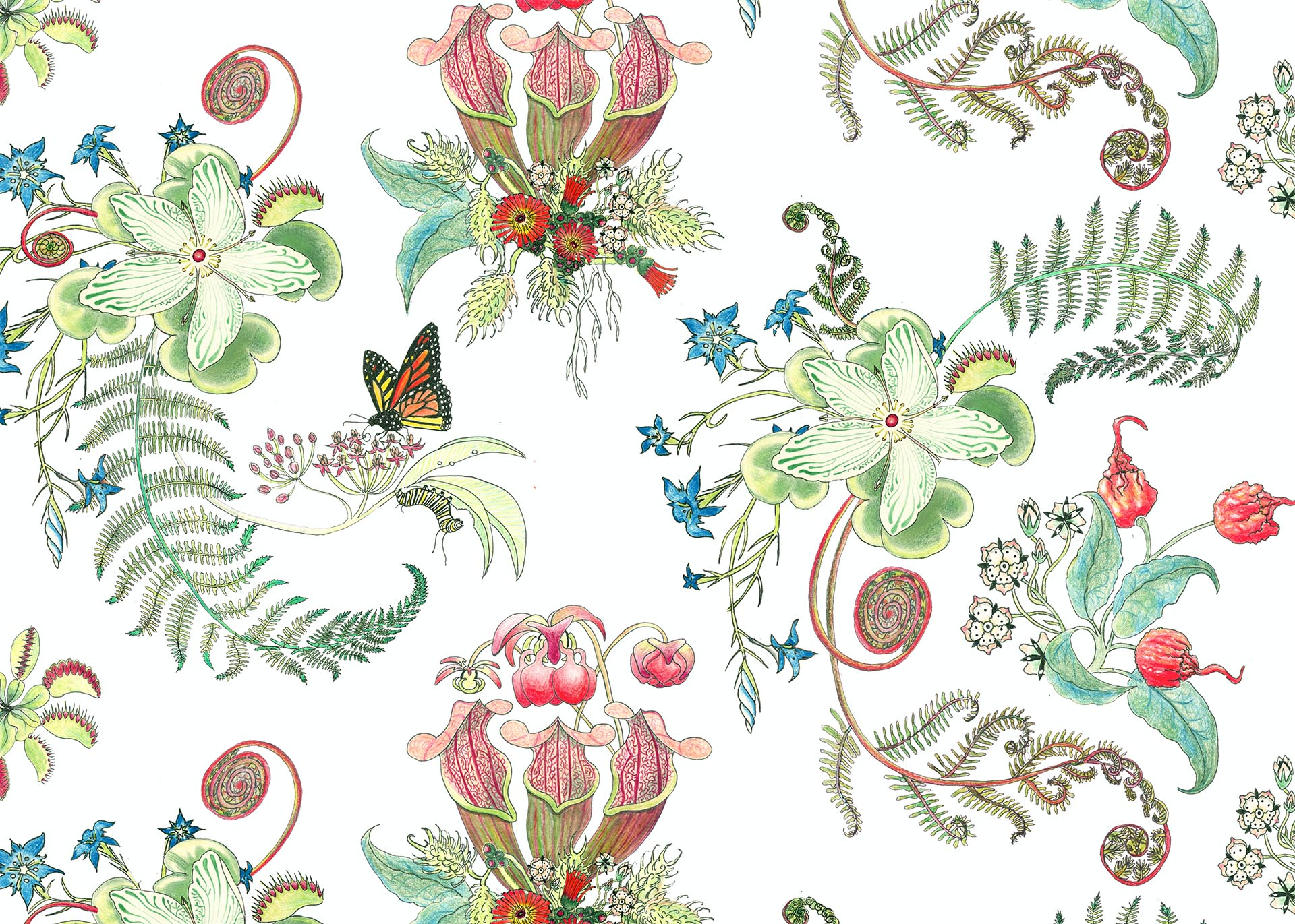 NeutralPosies, in the Carolina Tree of Life Collection by Newton Paisley.