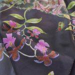 Rabb's fringe limbed tree frog scarf