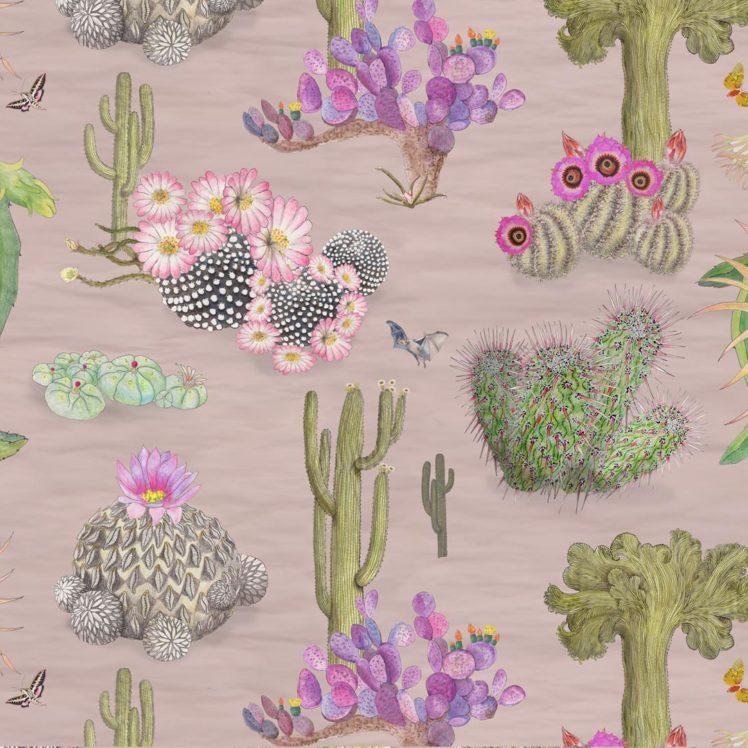 blushpinkcactus
