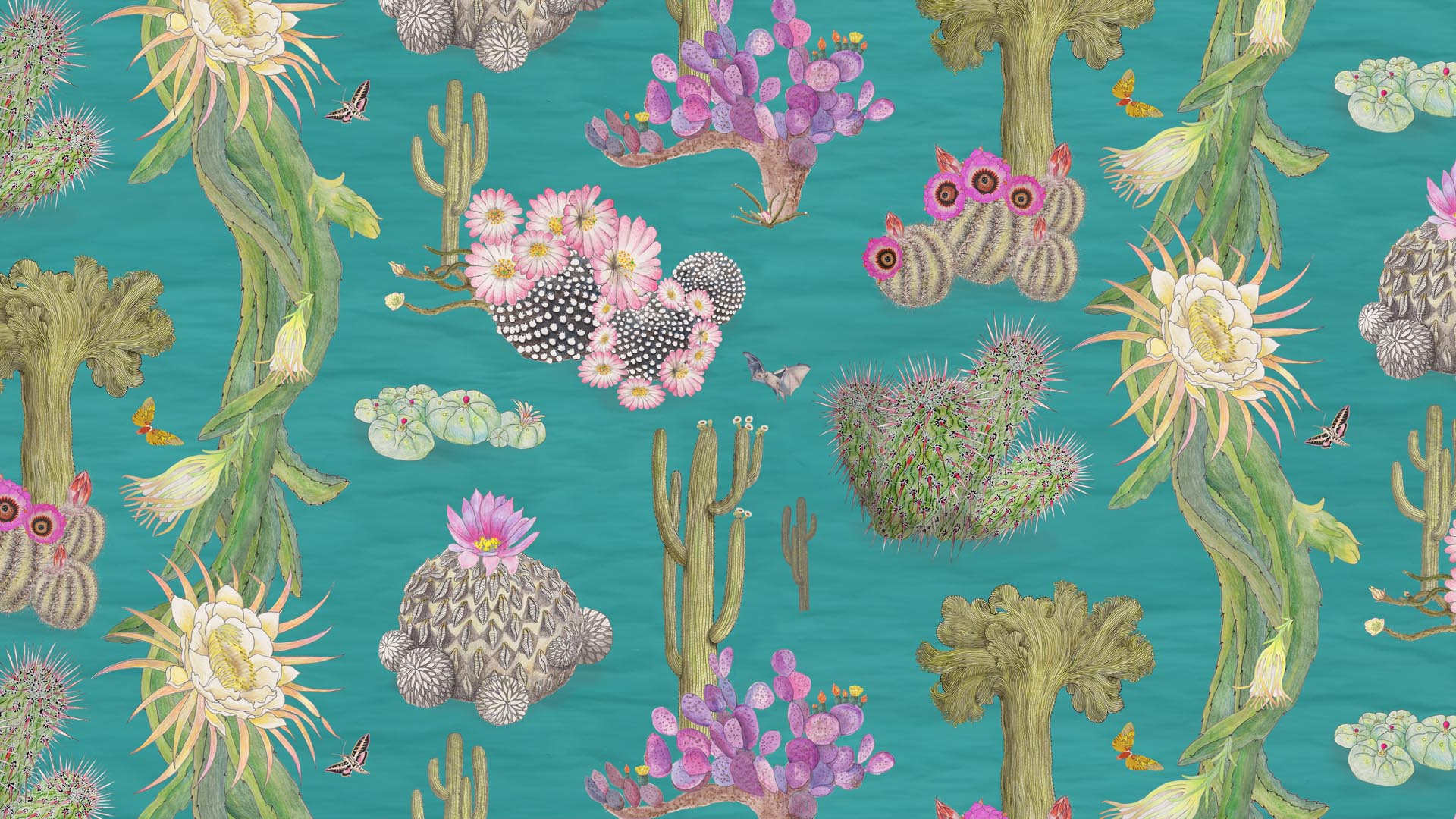 Mexican Cactus in Turquoise