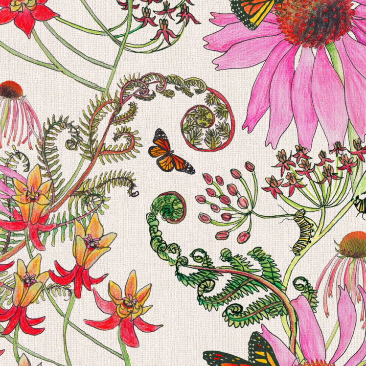 CarolinaMonarch Natural 27A detail 2 Newton Paisley