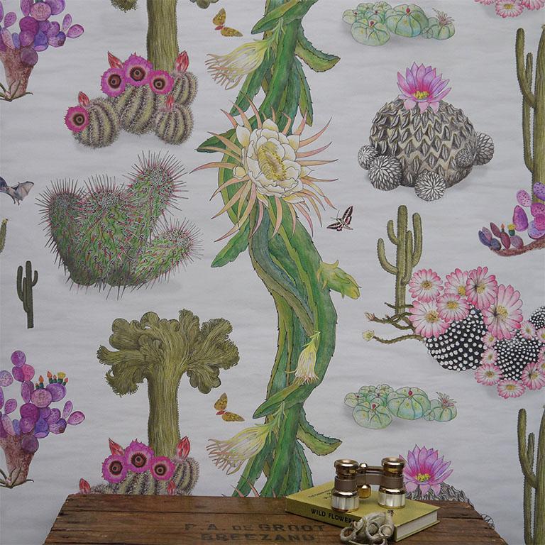 Cactus Mexicanos - Dove