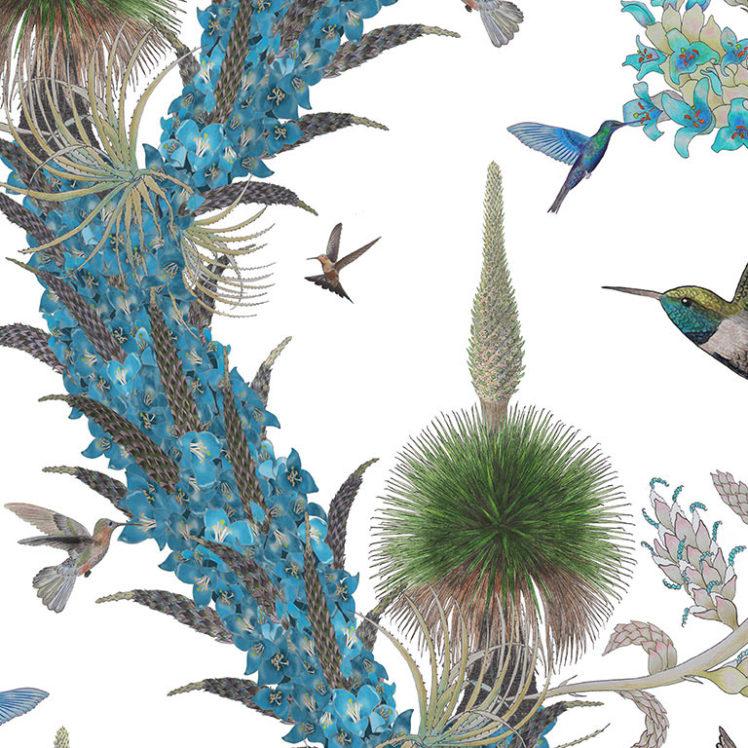 HummingbirdsDay