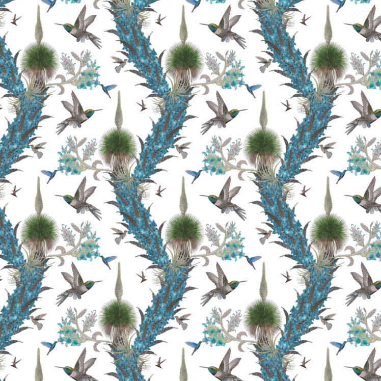 hummingbirdswhiterepeat