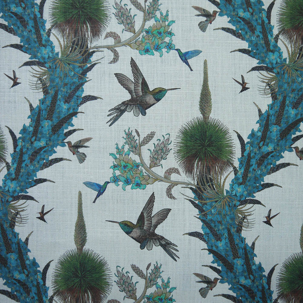 Madidi Hummingbirds - Natural