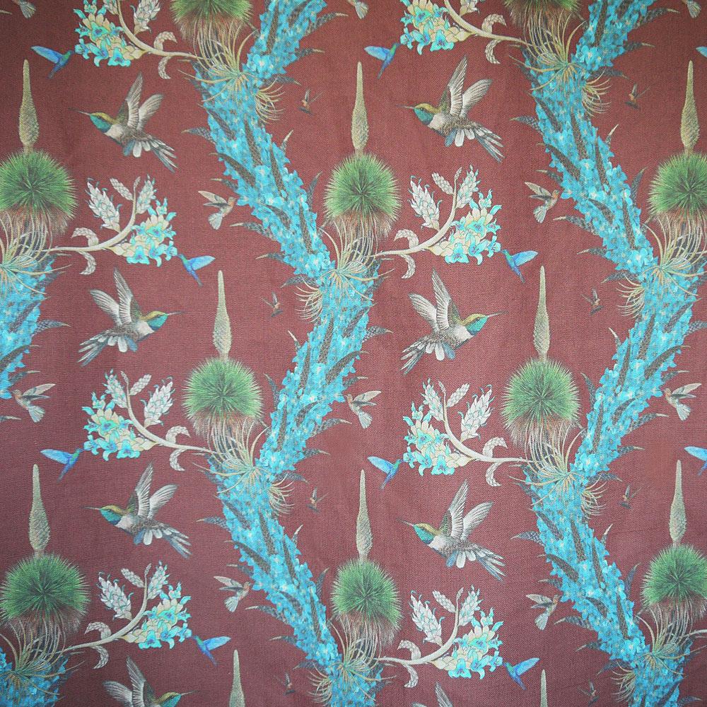 Madidi Hummingbirds - Oxblood
