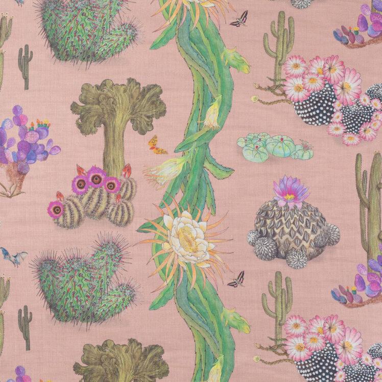 Cactus Mexicanos Blush