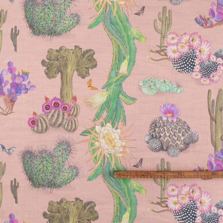 Cactus Mexicanos Blush R