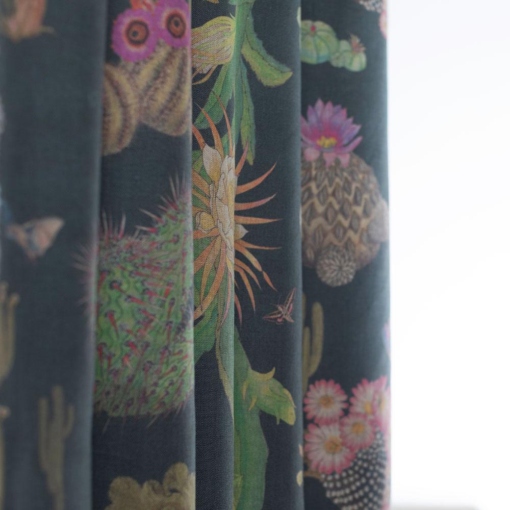 Cactus Mexicanos Carbon