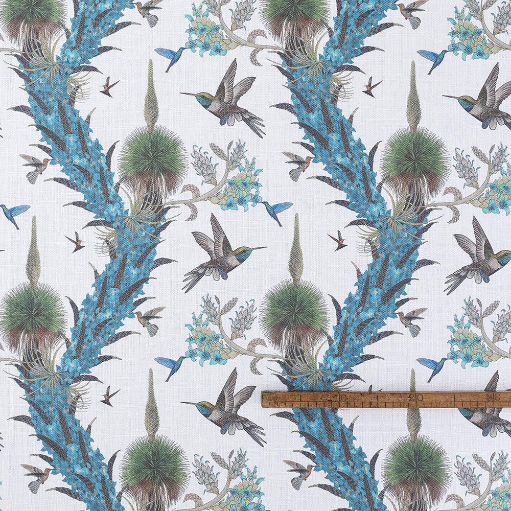 Madidi Hummingbirds - Cream